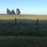 3465 Canright Rd.,156 acres 017
