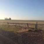 3465 Canright Rd.,156 acres 019