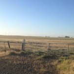 3465 Canright Rd.,156 acres 020