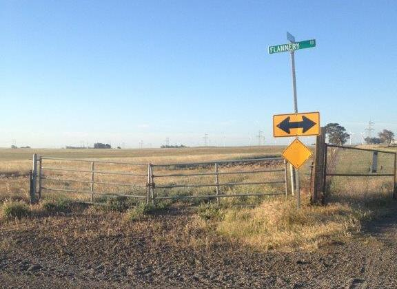3465 Canright Rd.,156 acres 021