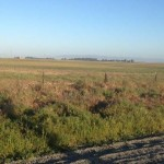 ron 3465 Canright Rd.,156 acres 004